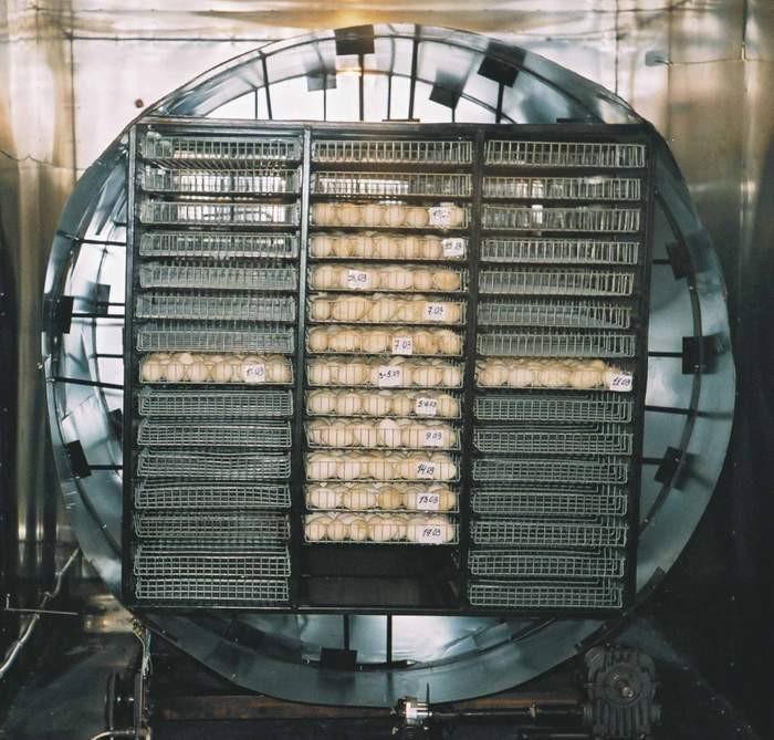 Лоточный блок инкубаторов ИНКИ