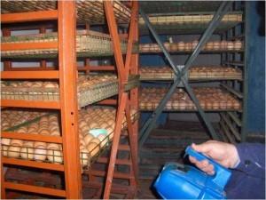 Дезинфекция яиц путем орошения
