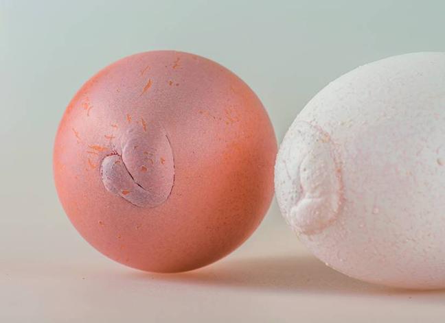 Вздутие на тупом конце яйца
